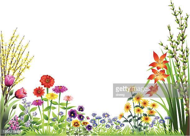 ilustrações, clipart, desenhos animados e ícones de flower garden - flowerbed