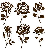 Flower icon. Set of decorative rose silhouettes. Vector rose