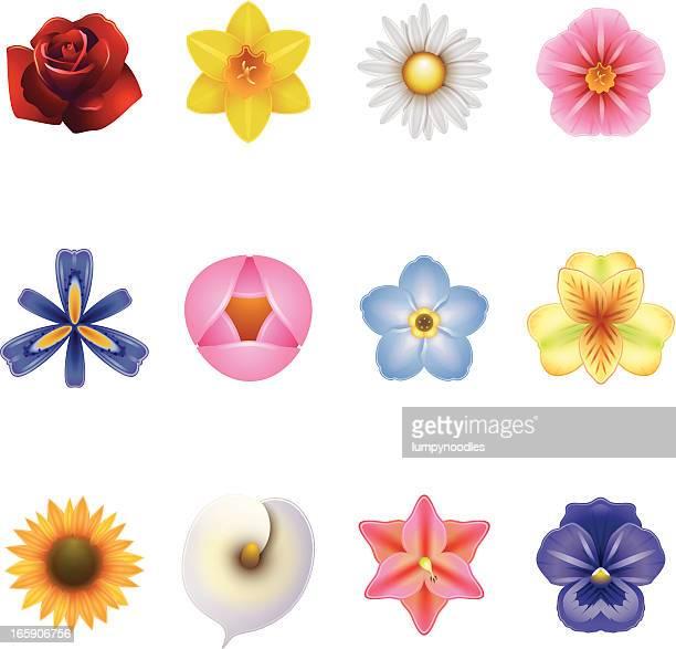 flower icons - single flower stock illustrations