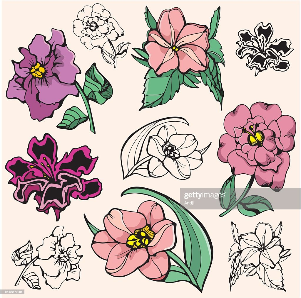Flower Illustrations VII (Vector)