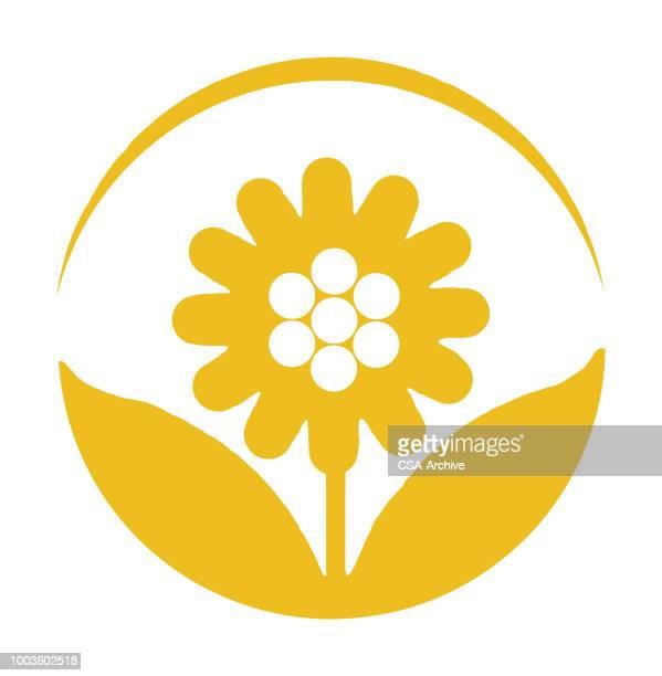 Flower Inside Circle