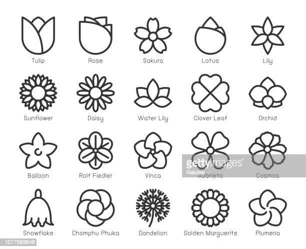 flower - line icons - flower stock illustrations