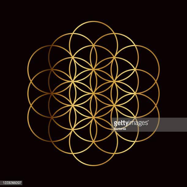 flower of life sacred geometry symbol - new life stock illustrations