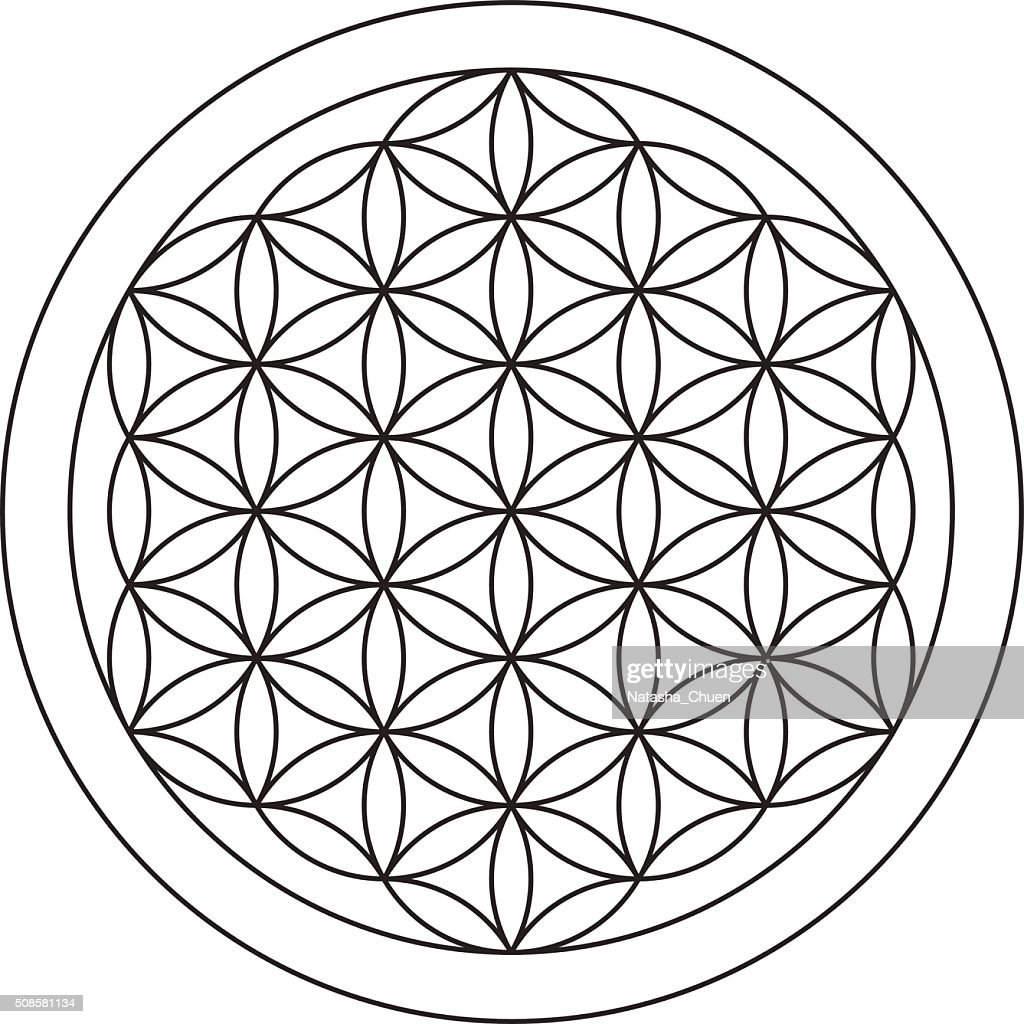 Flower of life. Sacred geometry. : Vector Art
