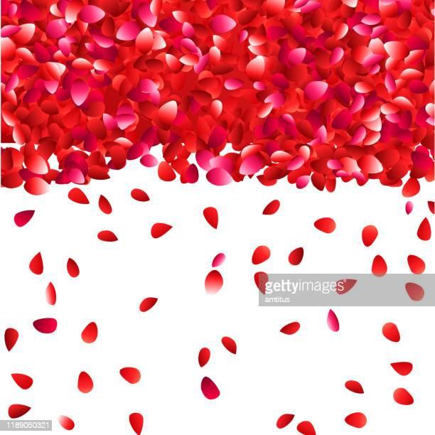 flower petals falling - red roses garden stock illustrations