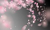 Flower Petals in the Wind