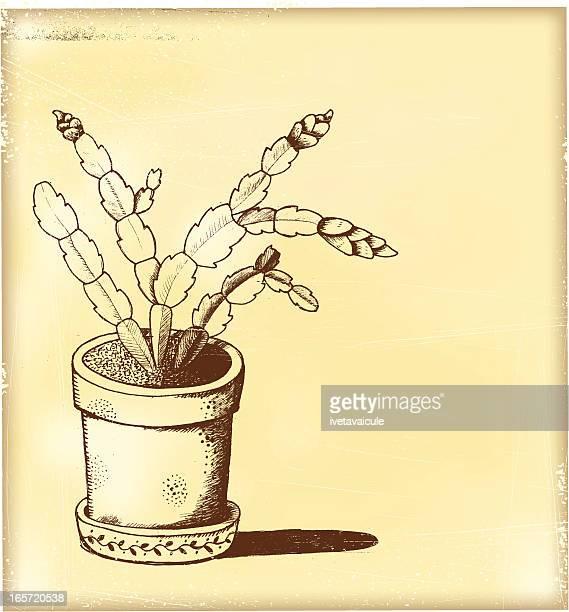 植木鉢 - シャコバサボテン点のイラスト素材/クリップアート素材/マンガ素材/アイコン素材