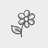 Flower sketch hand drawn doodle icon