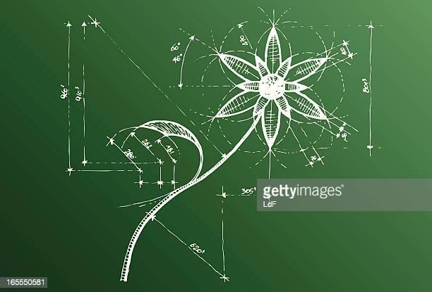 stockillustraties, clipart, cartoons en iconen met flower sketch - enkele bloem