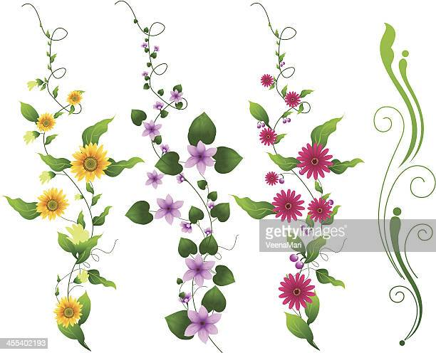 flower vine - vine stock illustrations