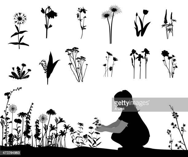 flowering vector silhouette - flowerbed stock illustrations, clip art, cartoons, & icons