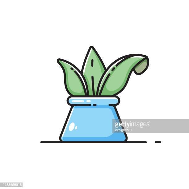 illustrations, cliparts, dessins animés et icônes de flowerpot icône design plat. - plante verte