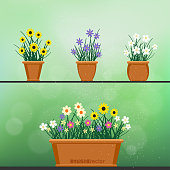 flowerpot with flower set green background
