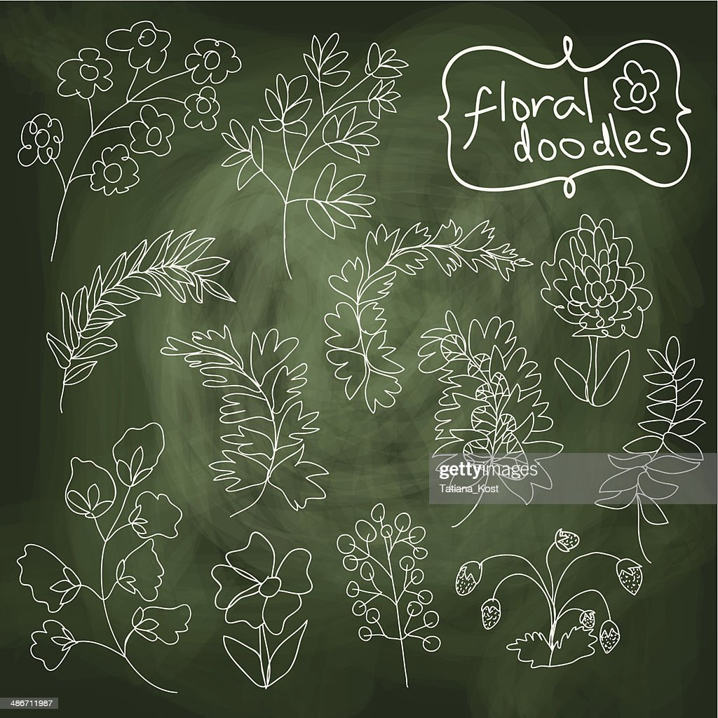 Flowers and plants set on chalkboard background