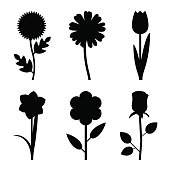 Flowers black silhouettes
