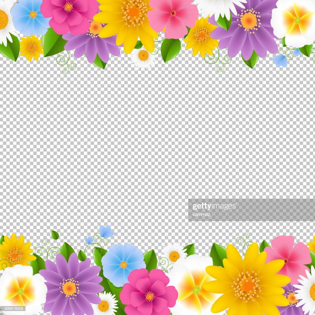 Flowers Frame Transparent Background