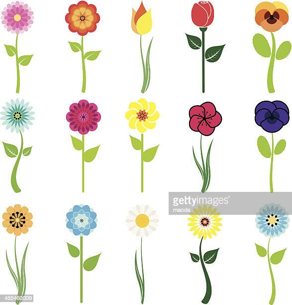 flowers icon set - rose flower stock illustrations, clip art, cartoons, & icons
