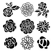 Flowers icons hand drawn set