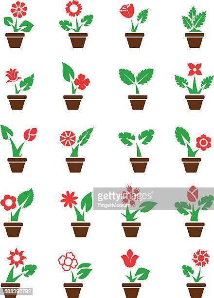 ilustrações de stock, clip art, desenhos animados e ícones de flores em pots - planta de vaso