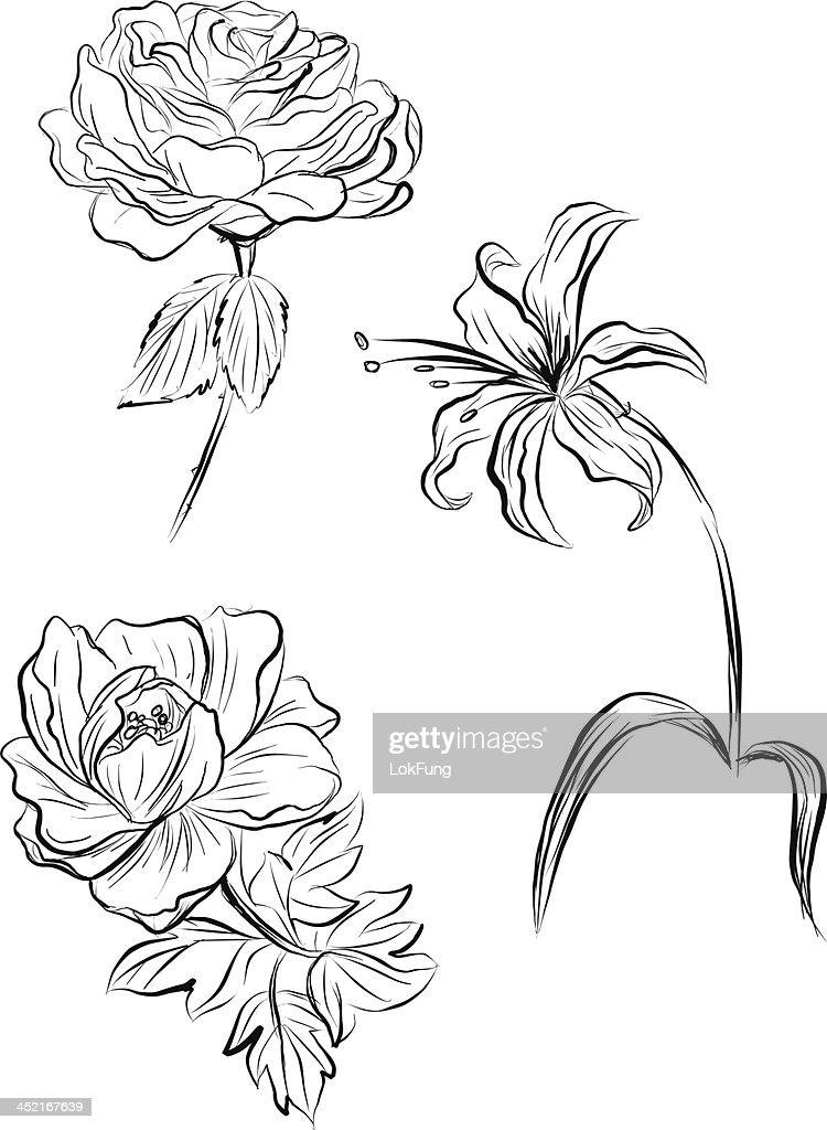 Flowers in sketch style