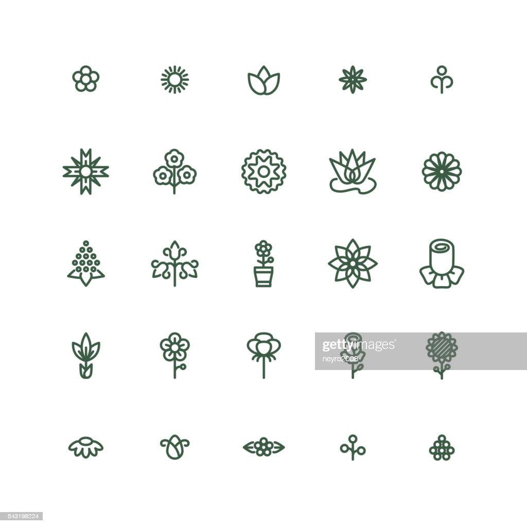 Flowers line vector icons