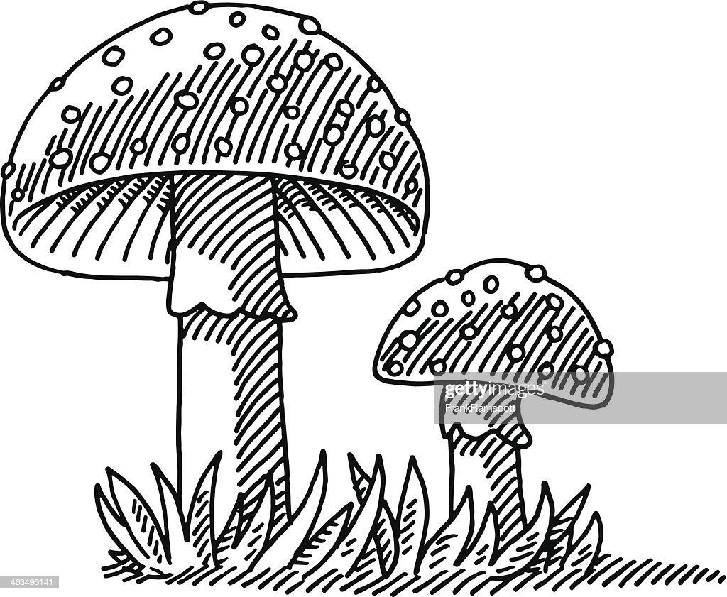 Uncategorized Mushroom Drawing fly agaric mushroom drawing vector art getty images art