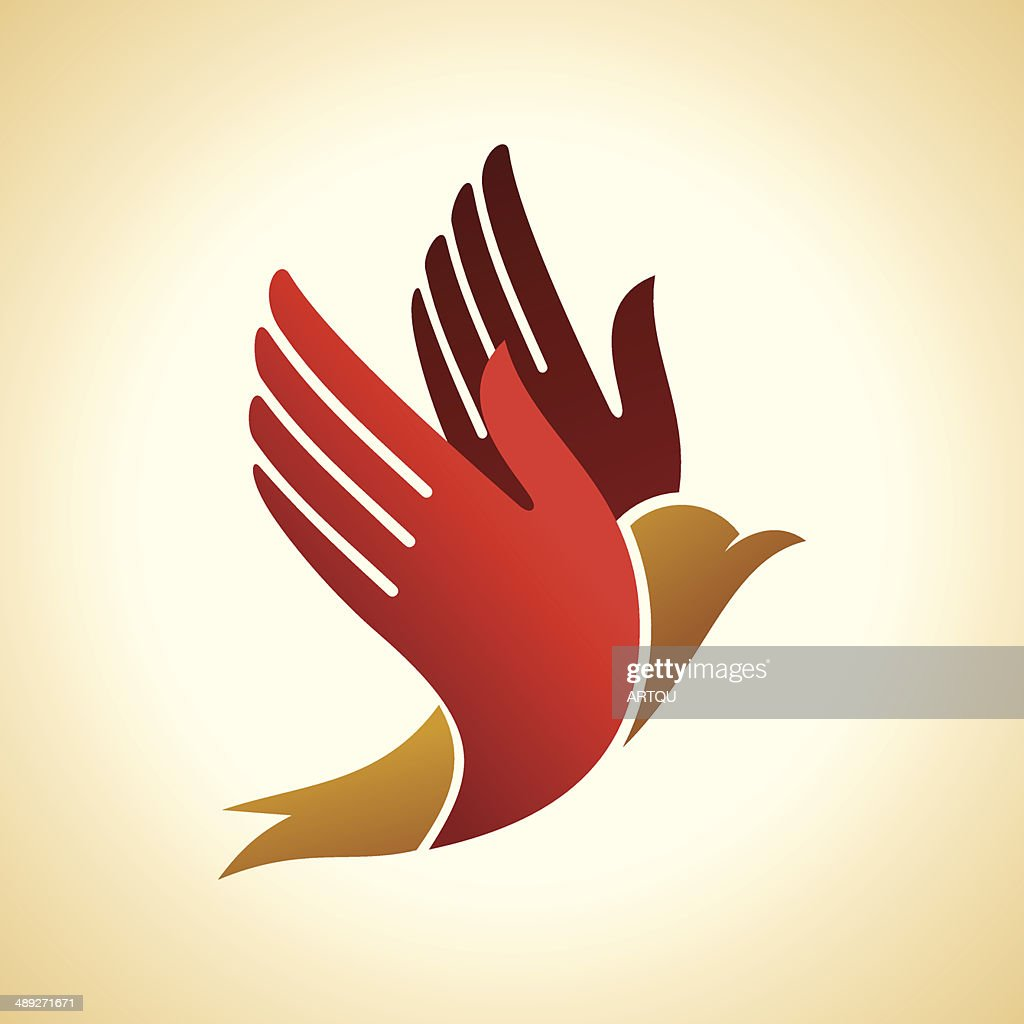 fly of bird to hand.