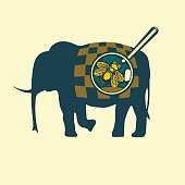 fly on the elephant
