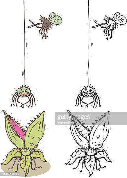 fly spider hungry carnivorous plant - venus flytrap stock illustrations, clip art, cartoons, & icons