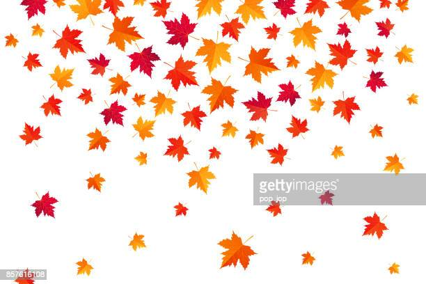 Flying Autumn Maple Leaves - Abstract background - vector illustration