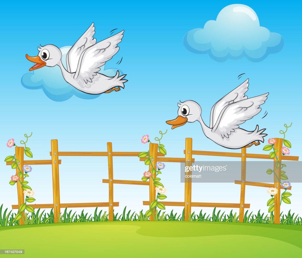 Flying bird : Vector Art