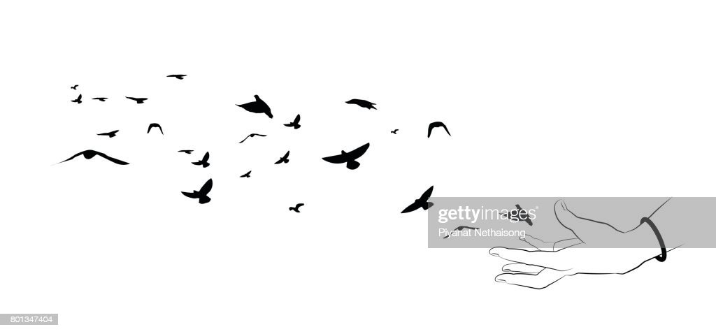 Flying birds and hand silhouettes on white background. Vector illustration. isolated bird flying and hand. drawing anatomy.
