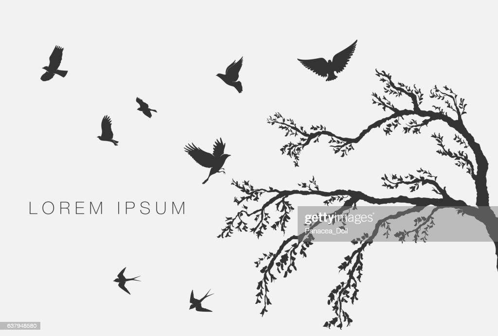 flying birds on tree branch