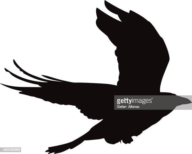 ilustraciones, imágenes clip art, dibujos animados e iconos de stock de flying crow vector forma - cuervo