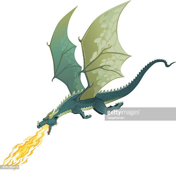 flying dragon breathing fire - isolated - dragon stock illustrations