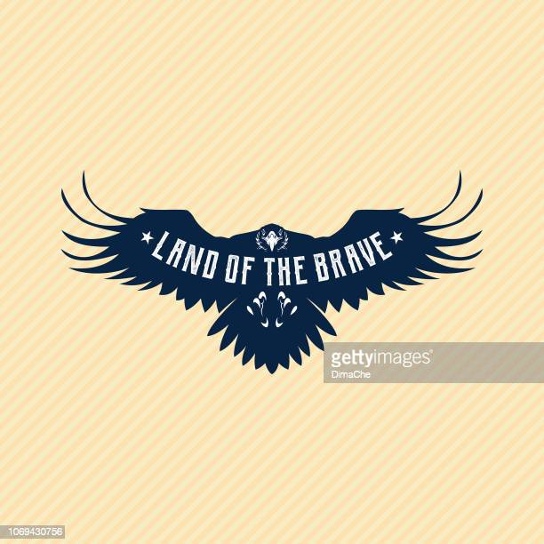 flying eagle silhouette with replaceable text part - falcons stock illustrations, clip art, cartoons, & icons