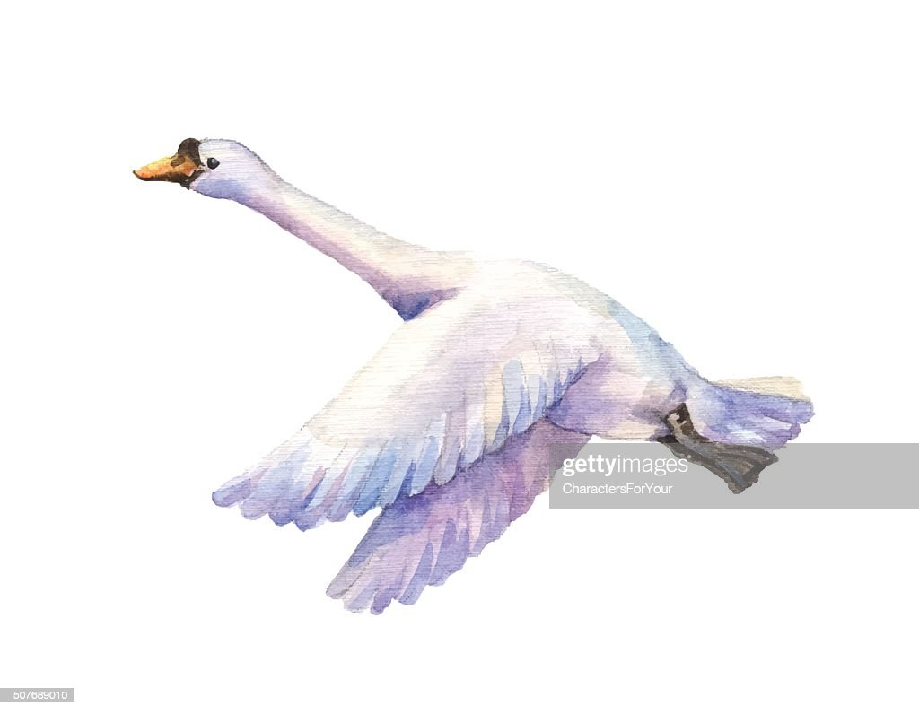 flying goose watercolor