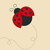 flying lady bug