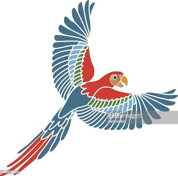 flying parrot color - macaw stock illustrations