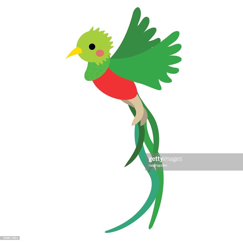 Flying Quetzal bird animal cartoon character vector illustration.