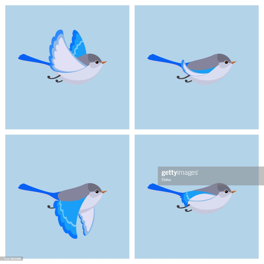 Flying Splendid Fairy Wren (female) animation sprite sheet