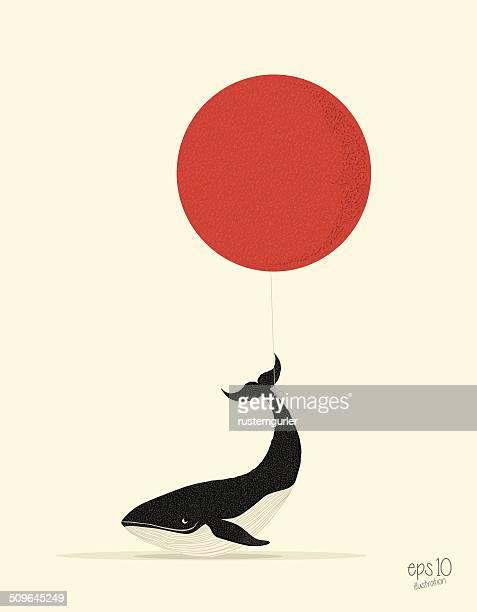 Flying ballena