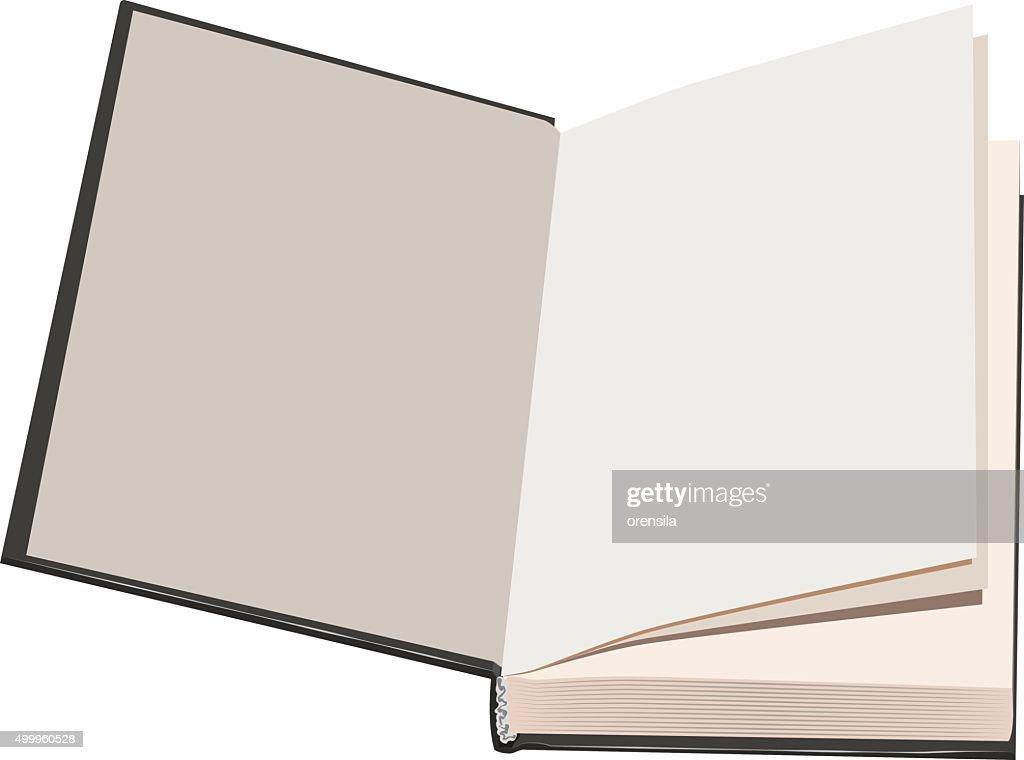 Flyleaf open book