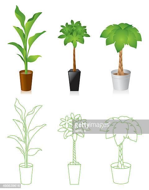 illustrations, cliparts, dessins animés et icônes de usine de végétation - plante verte