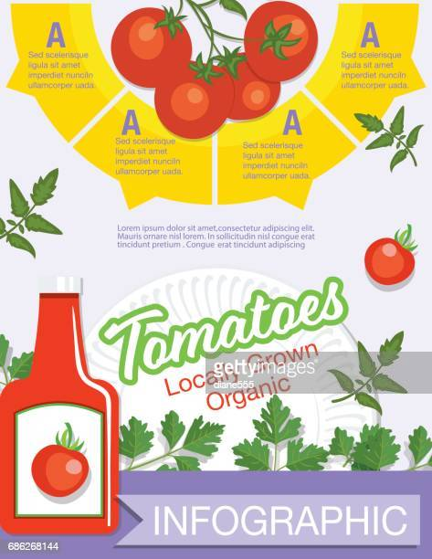 food infographic - vegetables - ketchup stock illustrations, clip art, cartoons, & icons