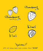 food menu illustrations