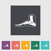 Foot anatomy flat icon.