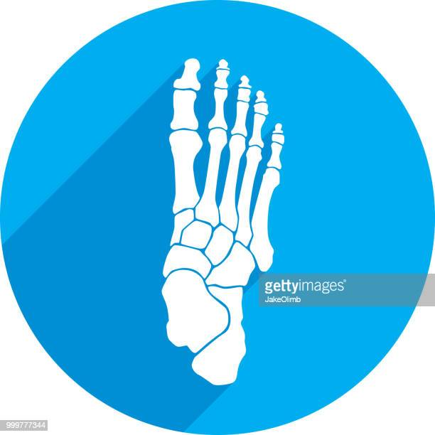 foot bones icon silhouette - foot stock illustrations, clip art, cartoons, & icons