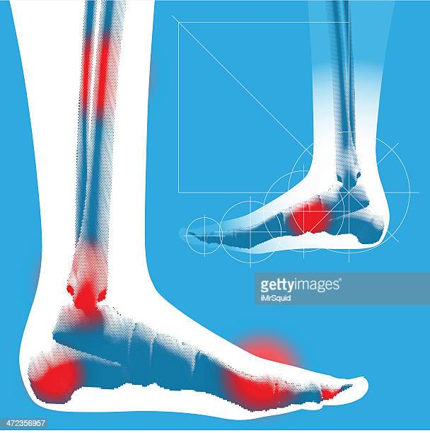 foot detail - side view - toe stock illustrations, clip art, cartoons, & icons