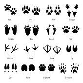 Foot trail vector. Animal footprint set. Silhouettes of tracks